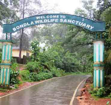 Visit Wildlife Sanctuaries